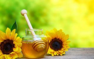 Рецепты с использованием пчелиного хлеба