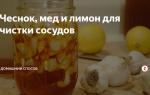 Зачем и как проводить очищение сосудов чесноком, лимоном и медом