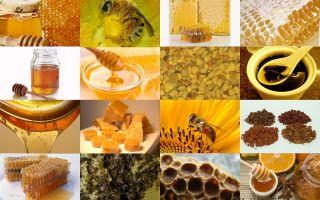 Воск — это экологически чистый продукт от пчелиной семьи