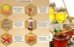 Мед горный – природный источник полезных веществ