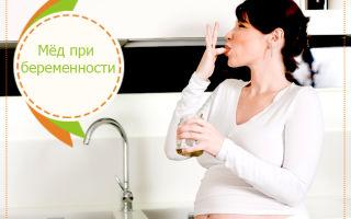 Насколько молоко полезно с медом при беременности?