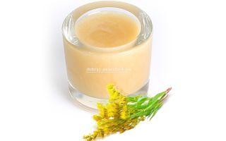 Мед из нектара золотарника