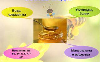 Уникальный состав меда: разнообразие компонентов