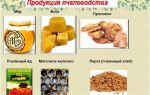 Обзор и перечень продуктов пчеловодства