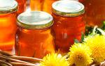 Лечение печени медом: доступные и вкусные народные средства