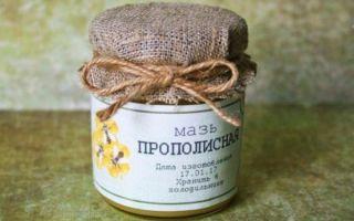 Мазь на основе прополиса. рецепты приготовления и применения