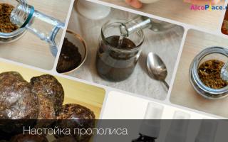 Настойка из прополиса на водке: рецепт правильного приготовления