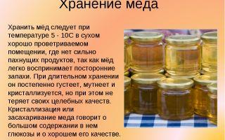 А вы знаете как и где хранить мед?