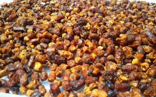 Перга пчелиная – противопоказания все-таки есть