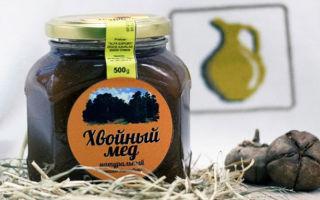Хвойный мед и его полезные свойства