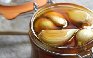Мед и его применение для эффективного лечения