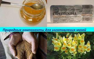 Мед при геморрое: эффективное лечение народными средствами