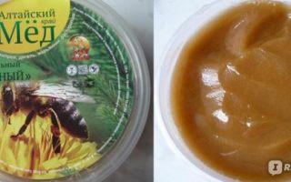 Различия в сортах алтайского меда