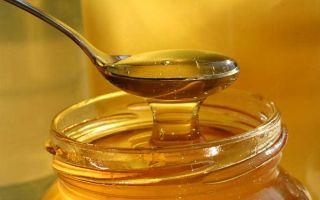 Применение аралиевого меда