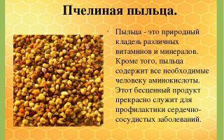 Пчелиная пыльца: польза и вред, особенности применения