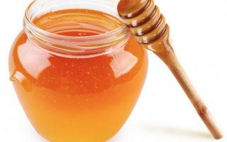 Использование меда при цистите