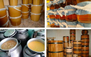 Хранение меда и выбор тары