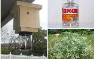 Как можно избавиться от пчел?