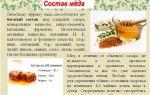 Состав и полезные свойства бортевого меда