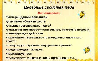 Особенности лесного меда