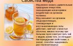 Майский мед – свойства и применение