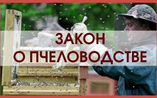 Закон о пчеловодстве 2016 года – урегулирование деятельности пчеловодов
