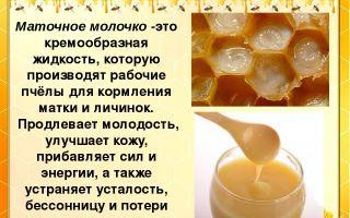 Маточное молочко – применяем и живем сто лет