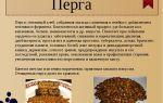 Применение пчелиного холстика в народной медицине