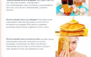 Рецепты средств от насморка с применением меда